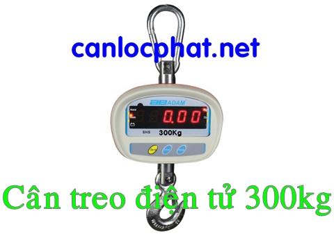 Cân treo điện tử 300kg