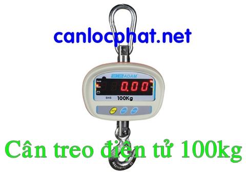 Cân treo điện tử 100kg